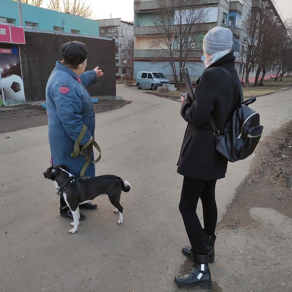 Безпритульні тварини: визначення кола проблем у місті Дружківка